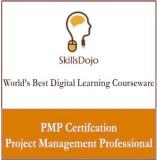SkillsDojo Project Management Profession...