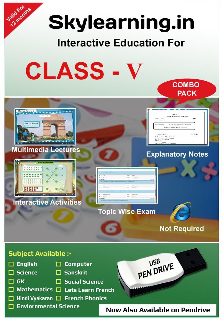 Skylearning.In CBSE Class 5 PenDrive Combo Pack (English, Maths, Science, SSt, EVS, Hindi Vyakaran, Sanskrit, Computer, G.K, French)(Pendrive)