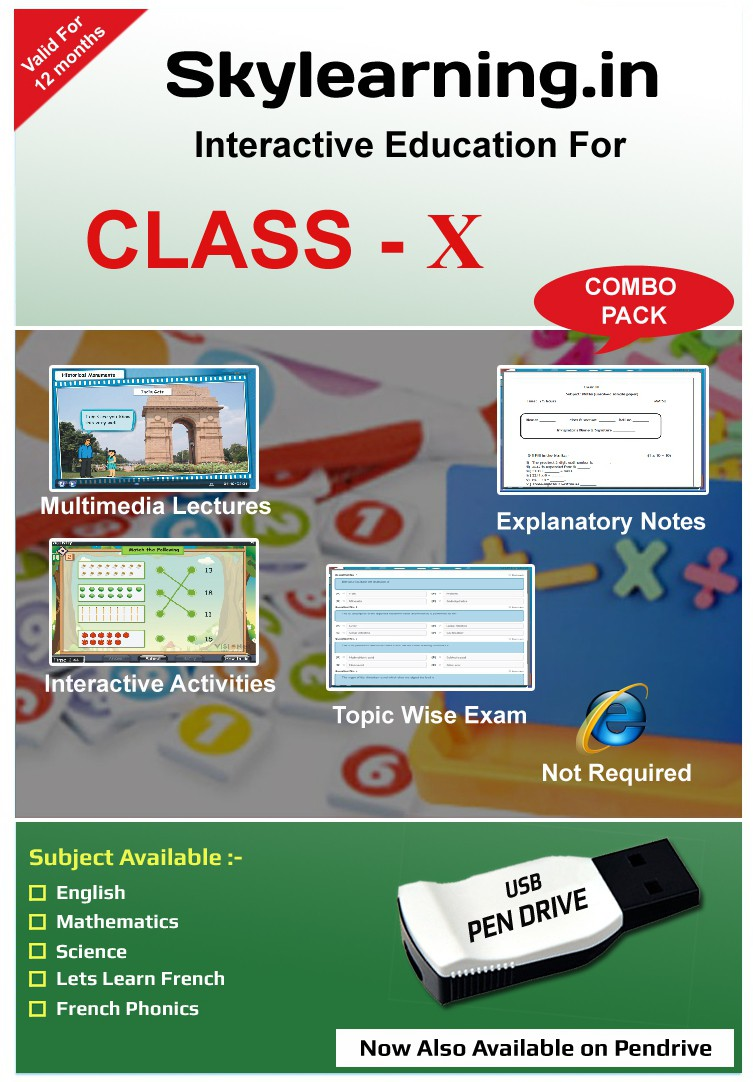 Skylearning.In CBSE Class 10 Combo Pack (English, Maths, Science, Lets learn French, French Phonics )(Pendrive)