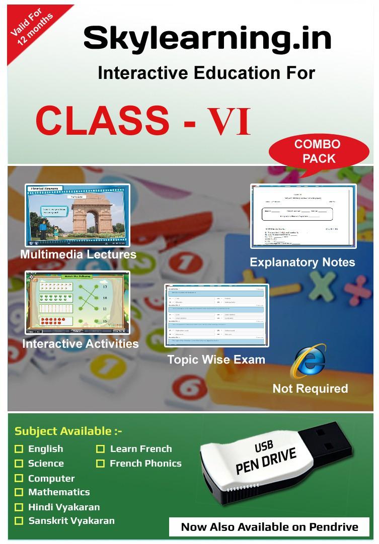 Skylearning.In CBSE Class 6 Combo Pack (English, Maths, Science, Hindi Vyakaran, Sanskrit, Computer, French)(Pendrive)