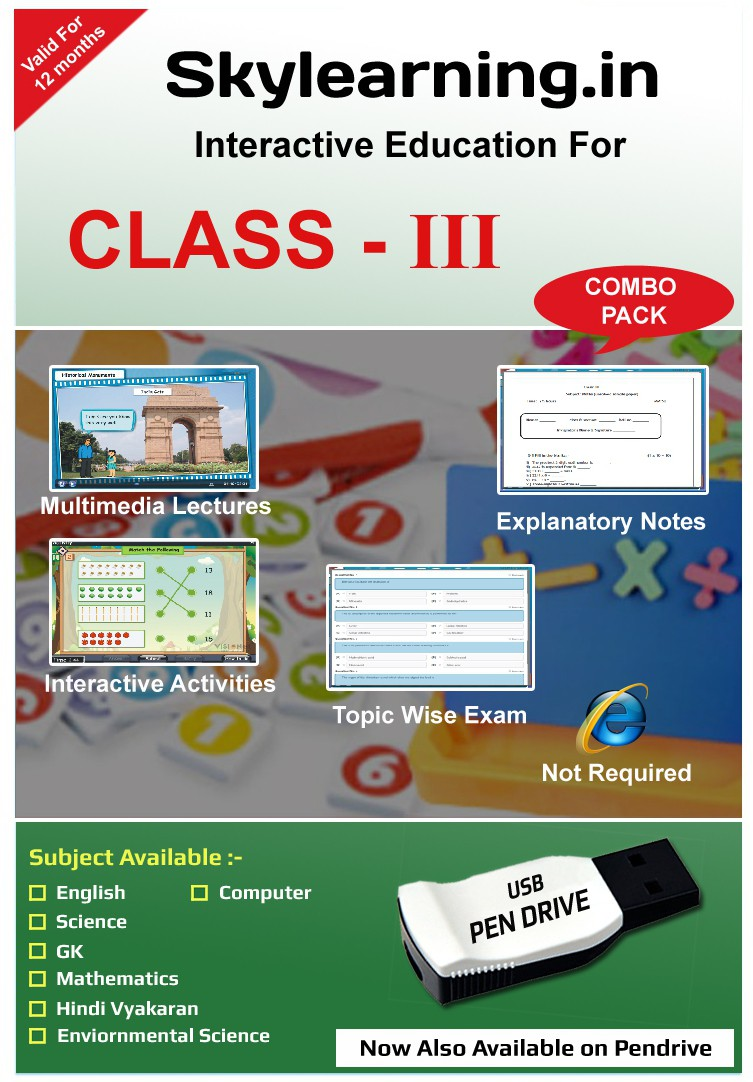 Skylearning.In CBSE Class 3 Combo Pack (English, Maths, Science, EVS, Hindi Vyakaran, Computer, G.K)(Pendrive)