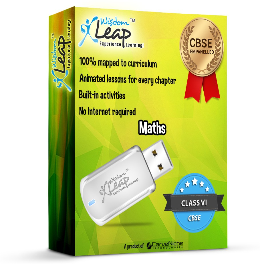 WisdomLeap Class 6 Mathematics(USB Flash Drive)