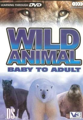 Deep Studies Inc. Wild Animal Baby To Adult