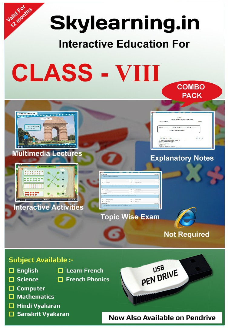 Skylearning.In CBSE Class 8 Combo Pack (English, Maths, Science, Hindi Vyakaran, Sanskrit, Computer, French)(Pendrive)