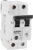 GIRISH Glisten 32 Amp DP MCB (2)
