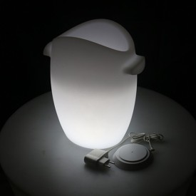Smart And Green 0.5W Fresh Decorative Emergency Light