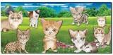Ultra 3D Cat Designed Envelopes Pack of ...