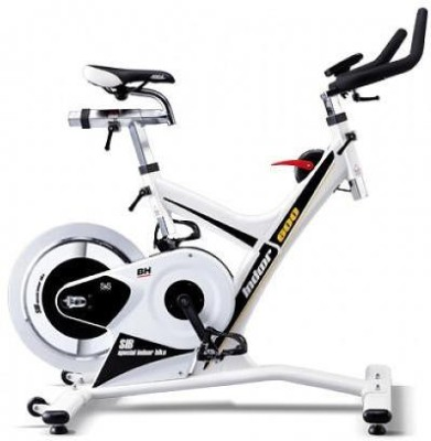 BH Fitness H960 Upright Exercise Bike