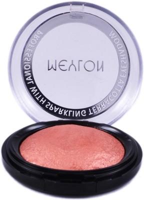 Meylon Paris Terecotta Eyeshadow 5 g(Cosmic Pink)