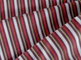 Arvind Cotton Striped Shirt Fabric (Un-s...