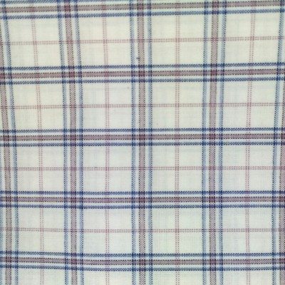 Dakshlene Cotton Checkered Shirt Fabric