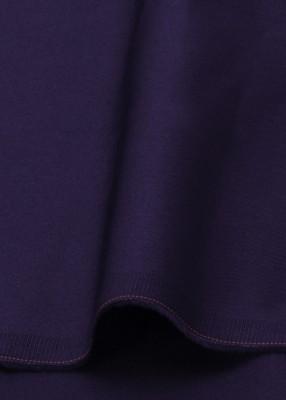 Kapash Cotton Solid Shirt Fabric