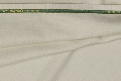 Raymond Home Viscose, Polyester Solid Trouser Fabric
