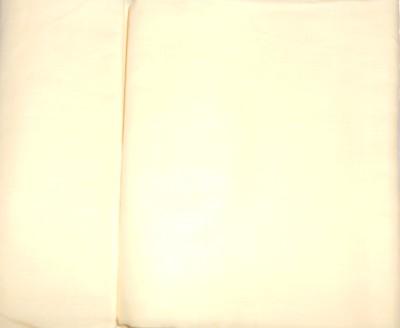 Amuse Cotton Linen Blend Solid Shirt Fabric