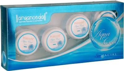 Aryanveda Herbals Aqua Cool Mint Kit 210 gm