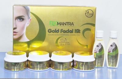 BioMantra Golden Glow Kit 300gms 300 g