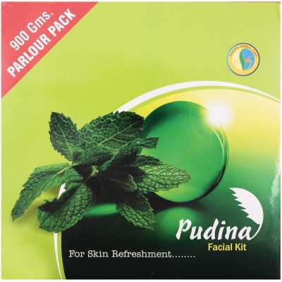 Nandini Herbal Care Nandini Pudina Facial Kit 900 g