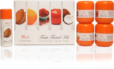 Nature's Essence Fruit Facial Kit 575 g