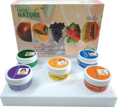 Nice Nature Fruit Facial Kit 270 g