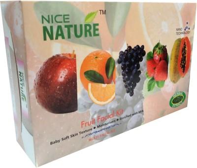 Nice Nature High Quality Diamond Kit 270 g