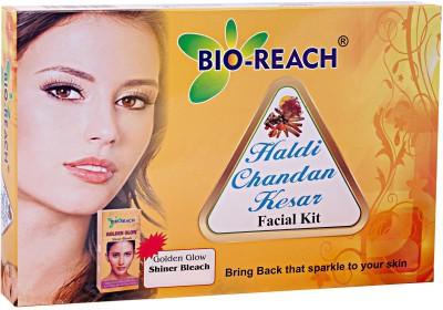 BIO REACH HALDI CHANDAN KESAR FACIAL KIT 80 g