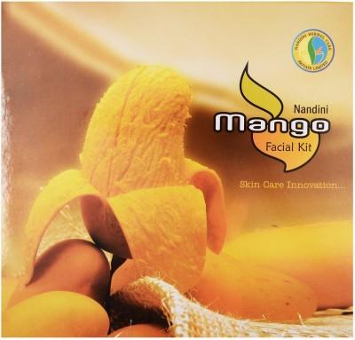 Nandini Herbal Care Mango Facial Kit 170 g