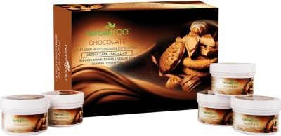 Herbal Tree Chocolate Facial Kit 420 g