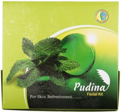 Nandini Herbal Care Pudina Facial Kit 170 g