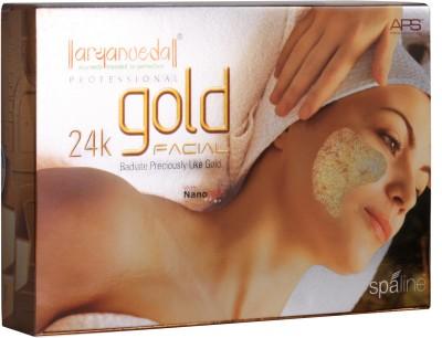 Aryanveda Herbals APS 24 k Gold Kit 510 gm