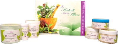 Mrigoy - Foresworth Abinitio Herbal Glow Kit 1550 g