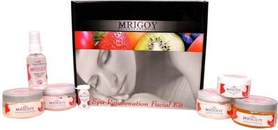 Mrig Spa Rejuvenation Facial Kit 515 g