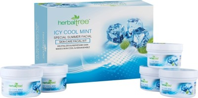 Herbal Tree Icy Cool Mint Facial Kit 420 g