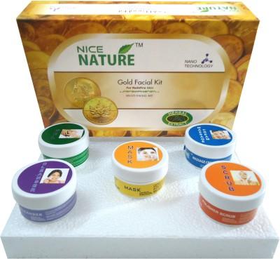 Nice Nature Gold Facial Kit 270 g