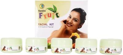 Nandini Herbal Care Fruit Facial Kit 220 g