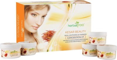 Herbal Tree Kesar Beauty Facial Kit 420 g