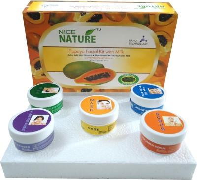 Nice Nature Papaya Facial Kit 270gms Net 270 g