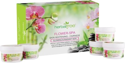 Herbal Tree Flower Spa Facial Kit 420 g