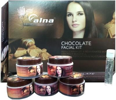 Alna Care Chocolate Facial Kit 310 g