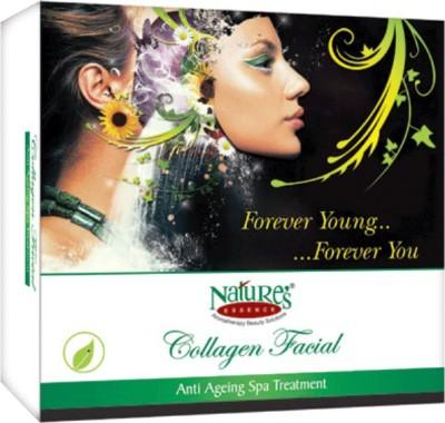 Nature's Essence Collagen Facial Kit 425 g