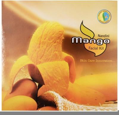 Nandini Herbal Care Mango Facial Kit, 300g 300 g