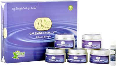 B 3+ Herbal Calamine Facial Kit 300 g