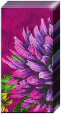 Ideal Home Range Purple Passion Pink
