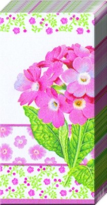 Ideal Home Range Primula Pink