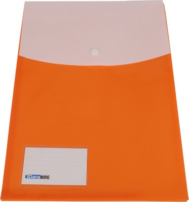 DataKing Polypropylene Vertical Double Pocket Expandable Bag With Name Card