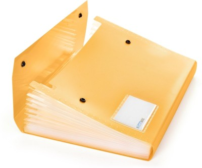 DataKing Polypropylene Expanding File With 13 Pockets With Name Card, Size A4, Color: Orange, Free Delivery.