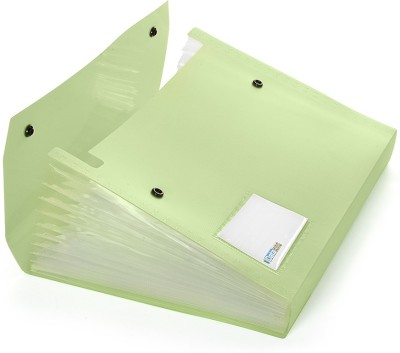 DataKing Polypropylene Expanding File With 13 Pockets With Name Card, Size A4, Color: Green, Free Delivery.