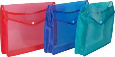 Aahum Sales Polypropylene File Folder Set of 3