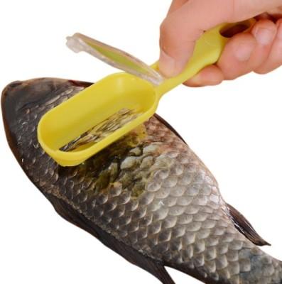 Futaba Fish Scaler