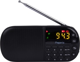 PAGARIA L837BT Portable Mp3 Player with Bluetooth,USB FM Radio(Black)