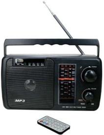 Rohaas A001 FM Radio(Black)